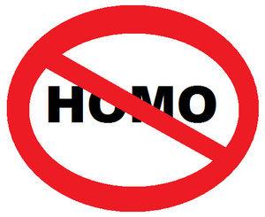 no_homo_by_bhrae